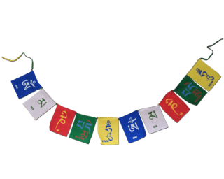 Ladakh bike flags